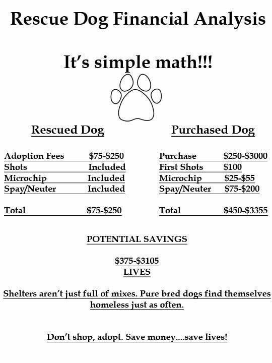 Adoption-Math